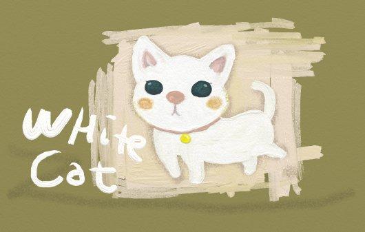 白猫ちゃん☆