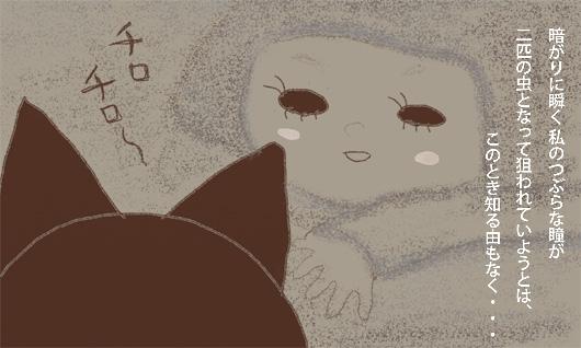 暗がりに瞬く私のつぶらな瞳が 二匹の虫となって狙われていようとは、このとき知る由もなく・・・