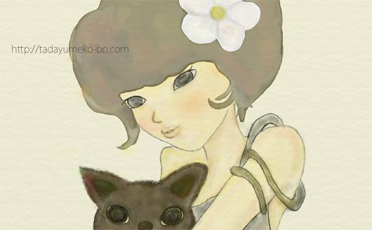 lady-cat1.jpg