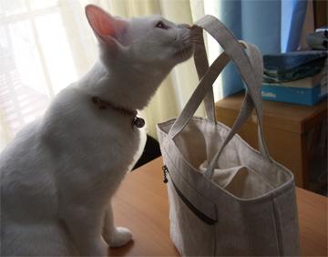 mika-bag2.jpg