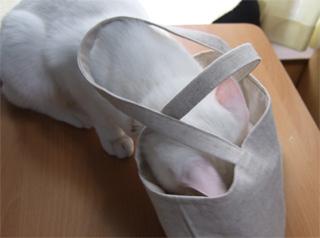 mika-bag3.jpg