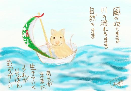 mouse-.jpg