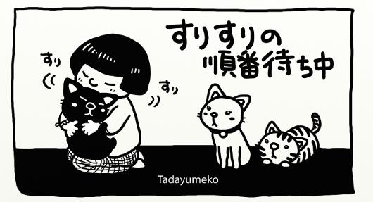 モノクロ猫イラスト