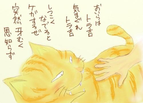 torakichi-5.jpg
