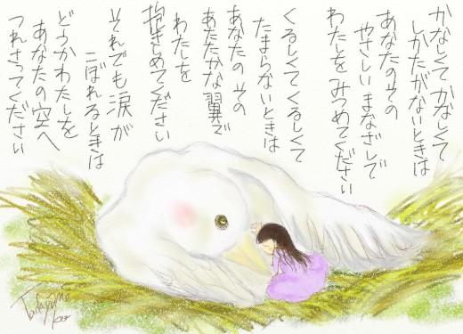 bird-.jpg