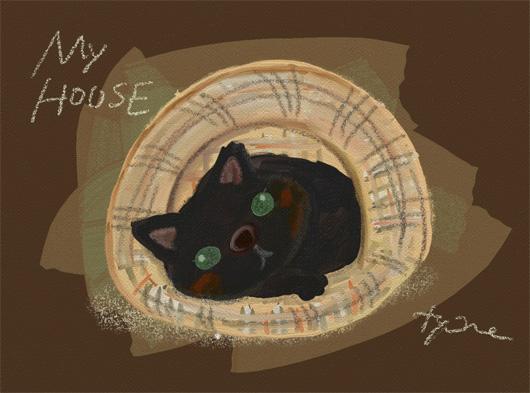 myhouse2.jpg